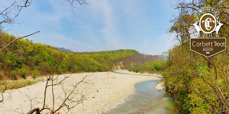 View of river in Jim corbett national park